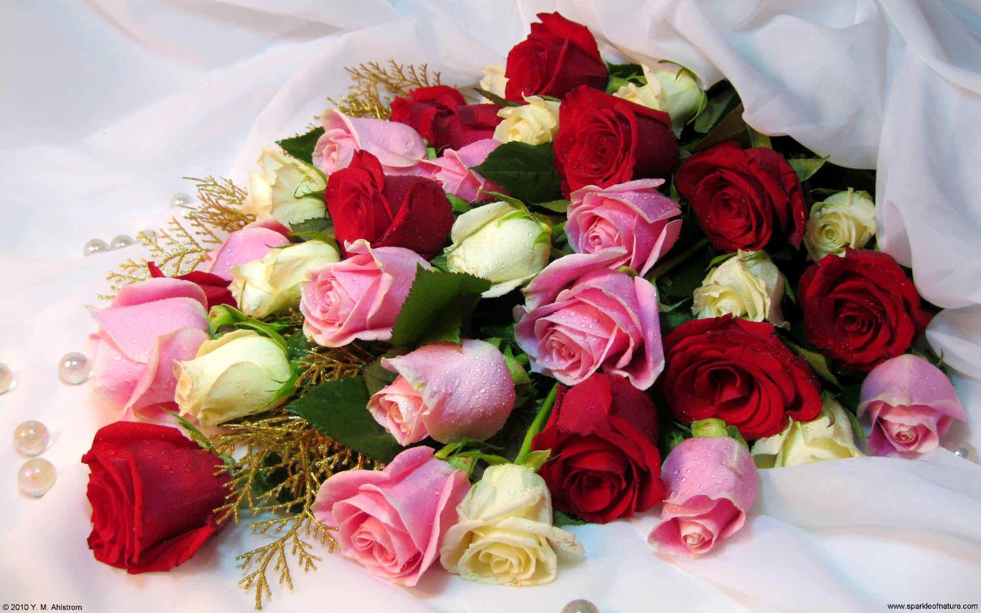 Roses Bouquet Tumblr