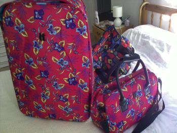 My luggage... Well I like it...lol