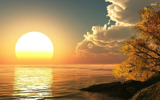 ocean-water-sun-tree-sky-cloud-rock